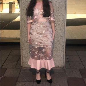 Venus blush midi floral mesh embroidered dress